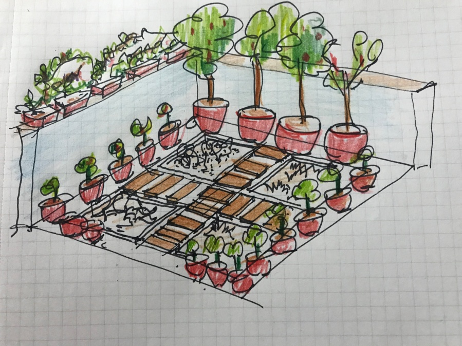 Initial garden design sketch