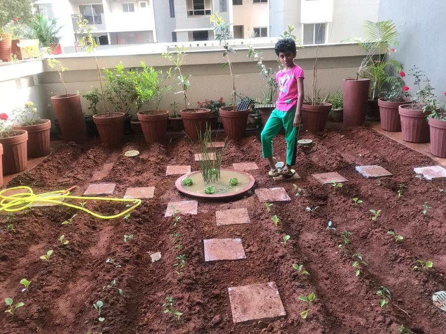 Garden is ready!